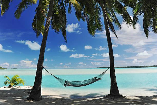 Paradise Island Hammock:スマホ壁紙(壁紙.com)