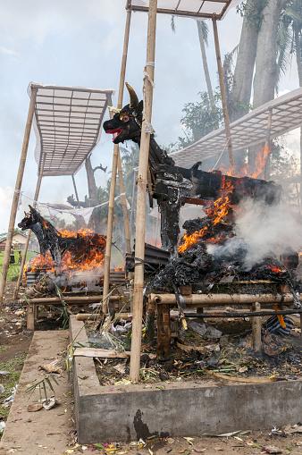 Cremation「Balinese cremation ceremony, burning effigies」:スマホ壁紙(14)