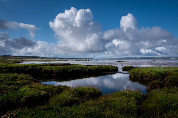 A Scottish shore line and tile pools under fluffy white clouds and blue skies:スマホ壁紙(壁紙.com)