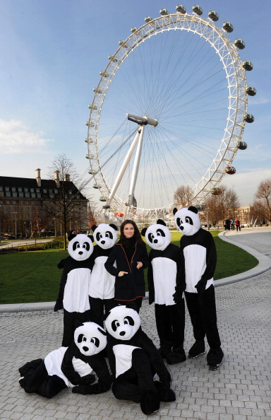 World Wildlife Fund「Sophie Ellis Bextor Unveils Giant Light Switch For The WWF Earth Hour」:写真・画像(14)[壁紙.com]
