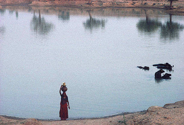India,Rajasthan,woman carrying water on head beside lake,elevated view:ニュース(壁紙.com)