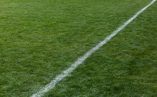 Pasture「Football green grass field」:スマホ壁紙(4)