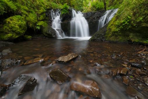 Columbia Gorge National Scenic Area「USA, Oregon, Columbia Gorge National Scenic Area, Gorton Creek Falls, Waterfalls in green forest」:スマホ壁紙(7)