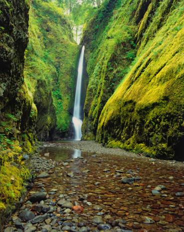 Oneonta Gorge「USA, Oregon, Columbia River Gorge, Oneota Gorge Falls」:スマホ壁紙(14)