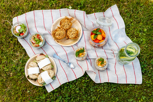 Picnic Blanket「Picnic with vegetarian snacks on meadow」:スマホ壁紙(11)