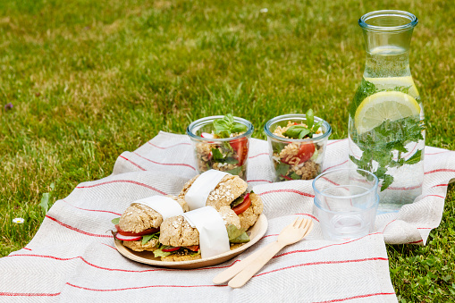 Picnic「Picnic with vegetarian snacks on meadow」:スマホ壁紙(12)