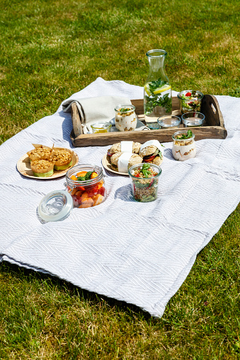 Picnic「Picnic with vegetarian snacks on meadow」:スマホ壁紙(14)