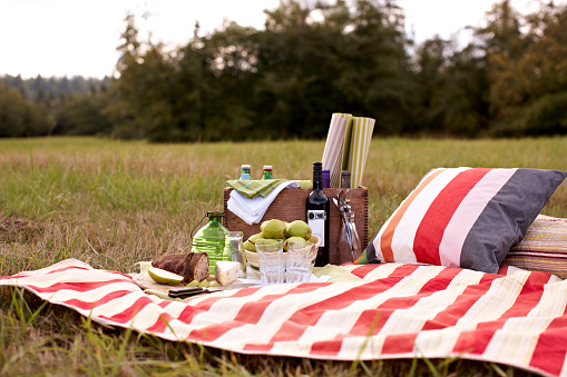 Picnic Blanket「Picnic with wine, fruit, bread and cheese on blanket on grass」:スマホ壁紙(4)