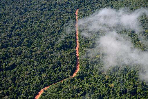 Deforestation「Brazil, Para, Trairao, road through Amazon rainforest used by timber mafia」:スマホ壁紙(2)