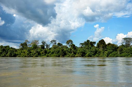 Amazon Rainforest「Brazil, Para, Rio Tapajos and Amazon rainforest」:スマホ壁紙(18)