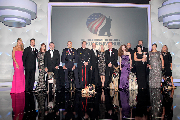 Jason Phillips「American Humane Association's 5th Annual Hero Dog Awards 2015 - Arrivals」:写真・画像(0)[壁紙.com]