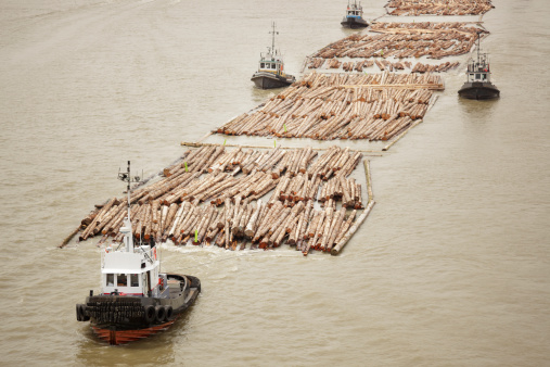Deforestation「Tugboats transporting cut logs.」:スマホ壁紙(16)