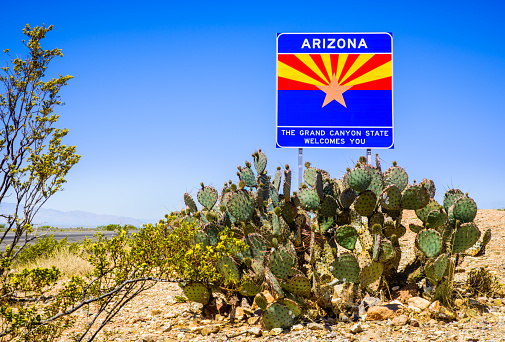 US State Border「Arizona State highway welcome sign with cactus, mountains, and sky」:スマホ壁紙(5)