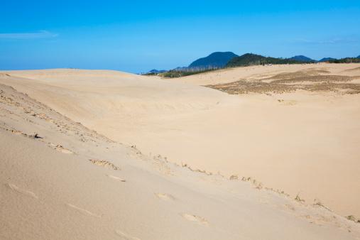 太陽の光「Sandy Beach」:スマホ壁紙(5)