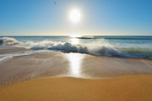 90マイルビーチ「Sandy Beach with Breakers and Sun」:スマホ壁紙(18)