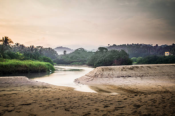 Sandy beach and lake in jungle:スマホ壁紙(壁紙.com)