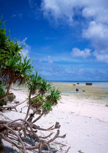 ビーチ「Sandy Beach」:スマホ壁紙(14)