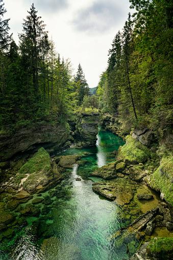 Diving Into Water「traunfall upper austria」:スマホ壁紙(12)