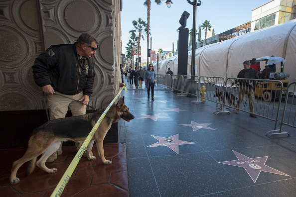 "Hollywood - California「Hollywood Prepares For The Premiere Of Walt Disney Pictures And Lucasfilm's ""Star Wars: The Force Awakens""」:写真・画像(18)[壁紙.com]"