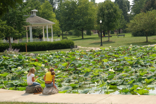 Water Lily「Gazebo and Lily Pond. Columbus, Ohio.」:スマホ壁紙(7)