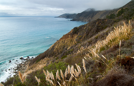 California State Route 1「Rocky coast of the Pacific coast highway, Monterey County, CA.USA」:スマホ壁紙(16)