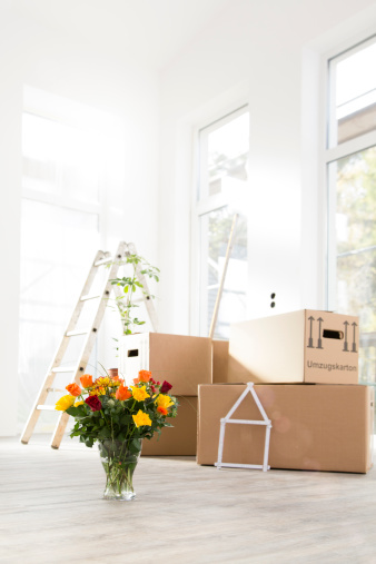 Congratulating「Cardboard boxes and bunch of flowers in new home」:スマホ壁紙(10)