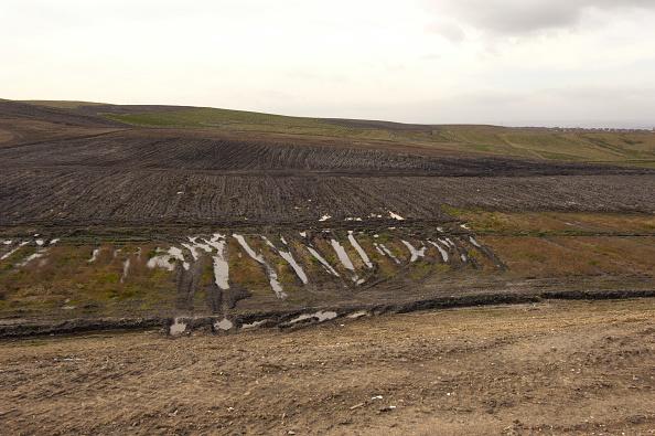Grass「Contaminated Brownfield land, North East England, United Kingdom」:写真・画像(4)[壁紙.com]