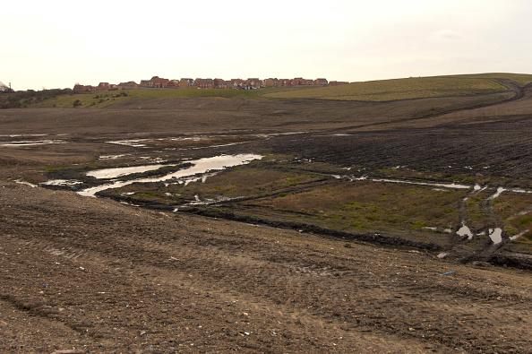 Grass「Contaminated Brownfield land, North East England, United Kingdom」:写真・画像(5)[壁紙.com]