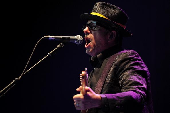 Elvis Costello「25th Annual Byron Bay Bluesfest 2014」:写真・画像(15)[壁紙.com]