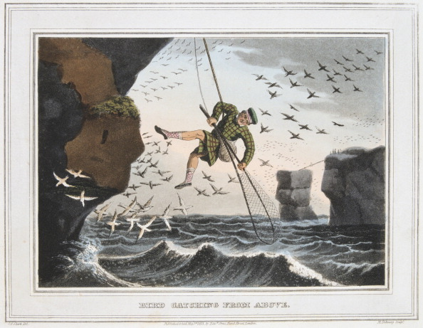 Stack Rock「'Bird Catching from Above', Shetland Islands, 1813.」:写真・画像(18)[壁紙.com]
