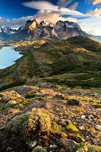 Andes「Quintessential Torres del Paine」:スマホ壁紙(11)