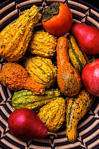柿「Colorful Autumn gourds」:スマホ壁紙(1)