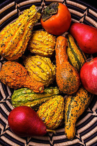 Colorful Autumn gourds:スマホ壁紙(壁紙.com)