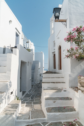 ノスタルジック「Pathway winds through traditional white Greek houses, framed by old street light and flowers, Kastro Village, Sifnos, Cyclades Islands, Greece」:スマホ壁紙(6)