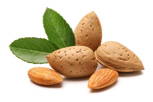 Frond「Almonds」:スマホ壁紙(11)