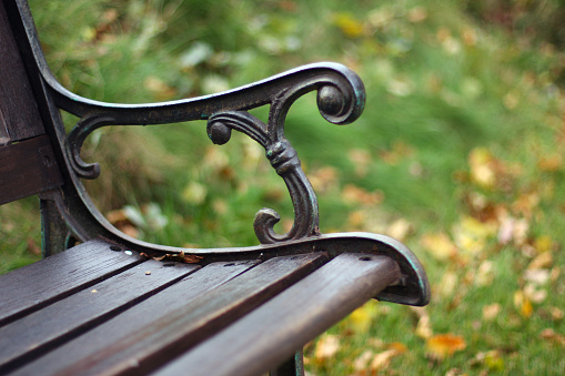 Park Bench「Closeup view of a single bench in the park」:スマホ壁紙(9)
