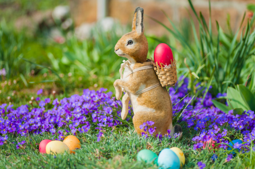 Easter Bunny「Easter bunny in garden with flowers」:スマホ壁紙(14)