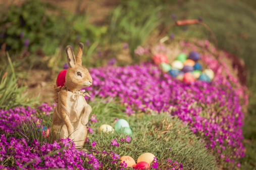 Easter Bunny「Easter bunny in garden with flowers」:スマホ壁紙(2)