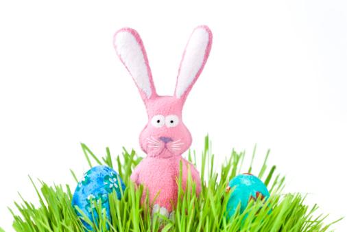Easter Bunny「Easter bunny」:スマホ壁紙(2)