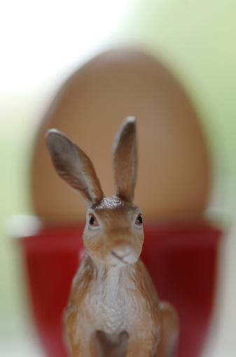 Easter Bunny「Easter bunny and egg」:スマホ壁紙(5)
