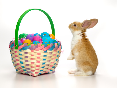Baby Rabbit「Easter bunny and basket of coloured eggs」:スマホ壁紙(7)