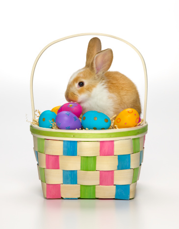 Baby Rabbit「Easter bunny in a basket with coloured eggs」:スマホ壁紙(0)