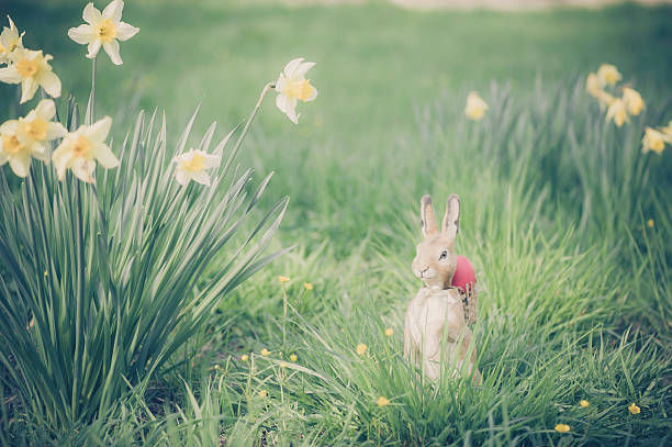 Easter bunny in garden:スマホ壁紙(壁紙.com)
