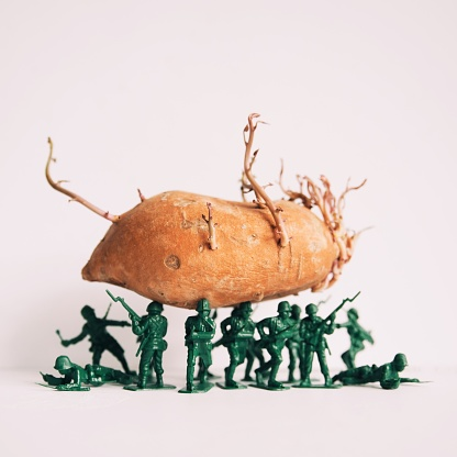 Toy Soldier「Toy soldier figures holding a sweet potato」:スマホ壁紙(17)