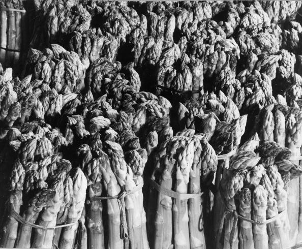 Asparagus「Asparagus」:写真・画像(19)[壁紙.com]