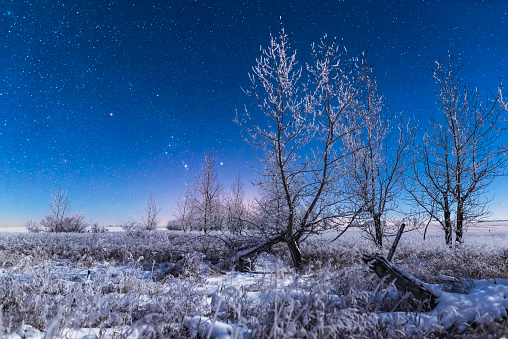 Multiple Exposure「Orion rising in the moonlight over a snowy landscape in southern Alberta, Canada.」:スマホ壁紙(17)