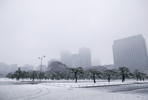 Snow「Japan, Tokyo, Park and skyscrapers in snow」:スマホ壁紙(18)