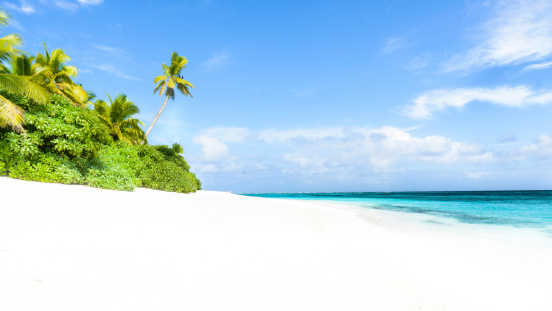 Panoramic「Fiji」:スマホ壁紙(1)