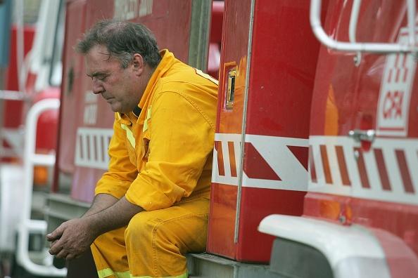 オーストラリア「Grampians Bushfire Aftermath」:写真・画像(16)[壁紙.com]