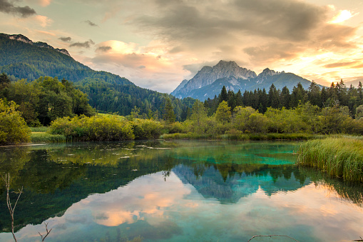 Twilight「Lake in Zelenci Springs,Upper Carniola,Slovenia」:スマホ壁紙(6)
